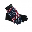ALL WEATHER STARS and STRIPES GLOVE